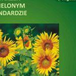 Organizacja wydarzeń w Zielonym Standardzie - okładka poradnika
